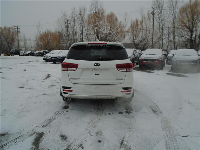2017 Kia Sorento 2.0L SX (Stk: 7SO8013) in Cranbrook - Image 4 of 15