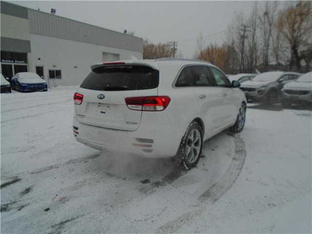 2017 Kia Sorento 2.0L SX (Stk: 7SO8013) in Cranbrook - Image 5 of 15