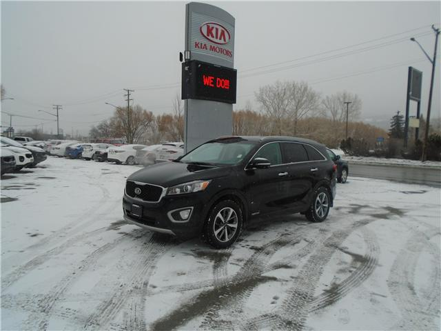 2017 Kia Sorento 3.3L EX (Stk: 9SO5213A) in Cranbrook - Image 1 of 30