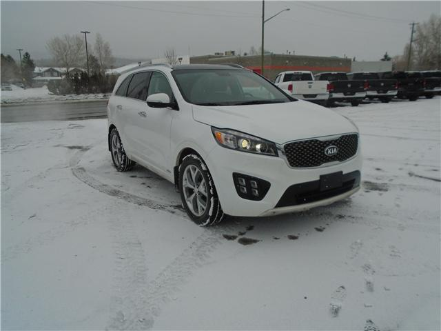 2017 Kia Sorento 2.0L SX (Stk: 7SO8013) in Cranbrook - Image 7 of 15