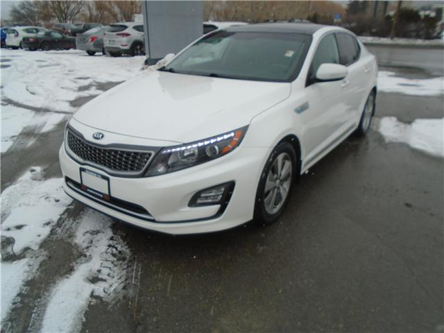 2016 Kia Optima Hybrid EX (Stk: PK1328A) in Cranbrook - Image 9 of 15