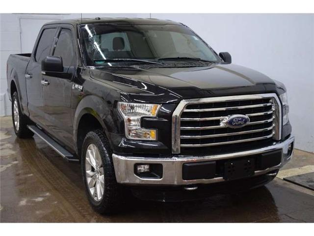 2015 Ford F-150 XLT 4X4 CREW CAB-NAV * HTD SEATS * BACKUP CAM (Stk: B3506) in Kingston - Image 2 of 30