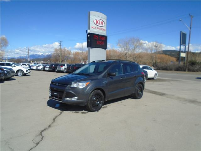 2015 Ford Escape SE (Stk: L1255A) in Cranbrook - Image 1 of 13