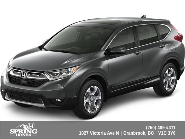2019 Honda CR-V EX (Stk: H06446) in North Cranbrook - Image 1 of 13