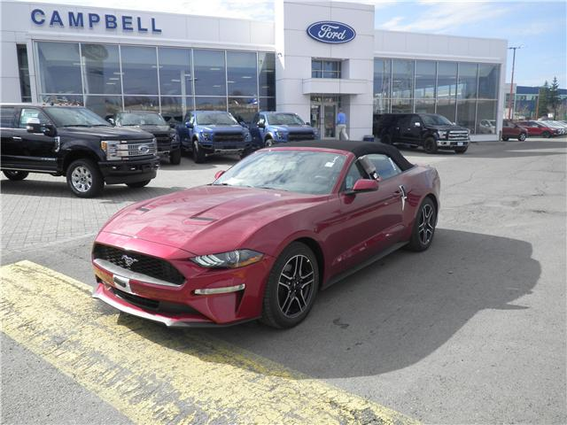 2019 Ford Mustang EcoBoost Premium (Stk: 1913800) in Ottawa - Image 1 of 9