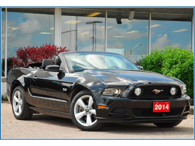 2014 Ford Mustang GT (Stk: 148070) in Kitchener - Image 1 of 20