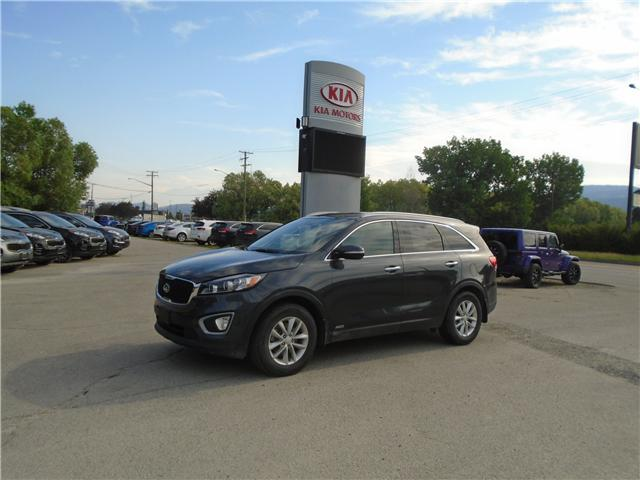 2016 Kia Sorento 2.4L LX (Stk: 9SO0033A) in Cranbrook - Image 1 of 20