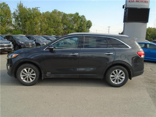 2016 Kia Sorento 2.4L LX (Stk: 9SO0033A) in Cranbrook - Image 2 of 20