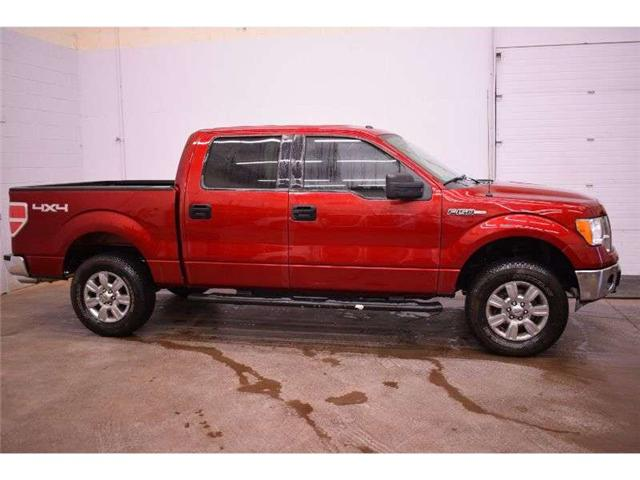 2014 Ford F-150 XLT 4X4 CREW CAB - HITCH RECEIVER * CRUISE  (Stk: B4102) in Kingston - Image 1 of 30