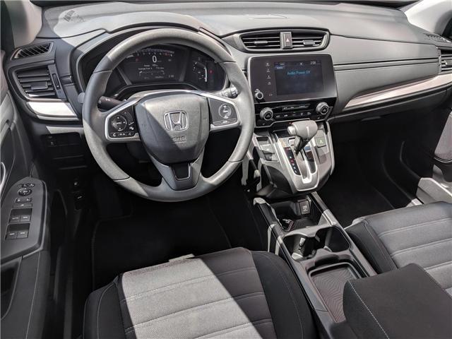 2017 Honda CR-V LX (Stk: B11640) in North Cranbrook - Image 12 of 15