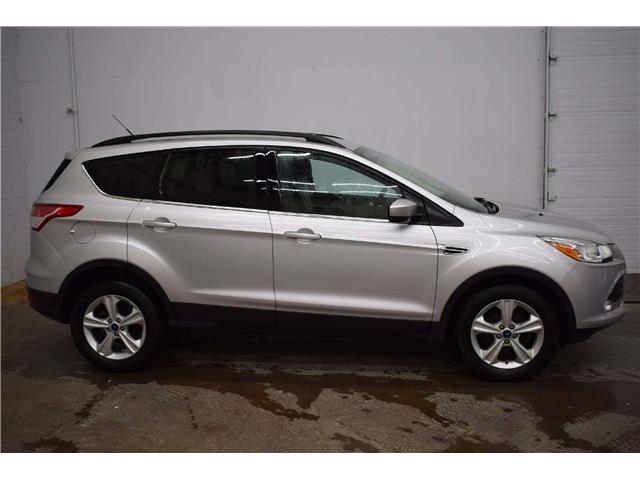2015 Ford Escape SE  (Stk: B4373) in Kingston - Image 1 of 30