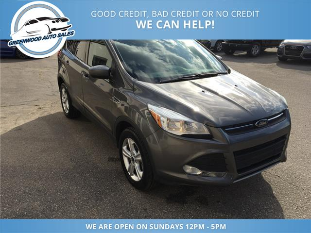 2013 Ford Escape SE (Stk: 13-44007) in Greenwood - Image 4 of 16