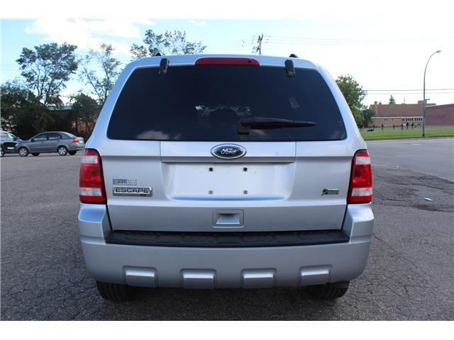 2010 Ford Escape XLT Automatic (Stk: CBK2834) in Regina - Image 4 of 19