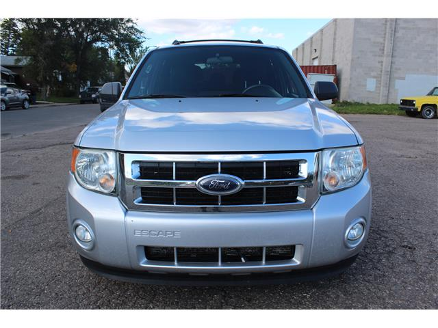 2010 Ford Escape XLT Automatic (Stk: CBK2834) in Regina - Image 8 of 19