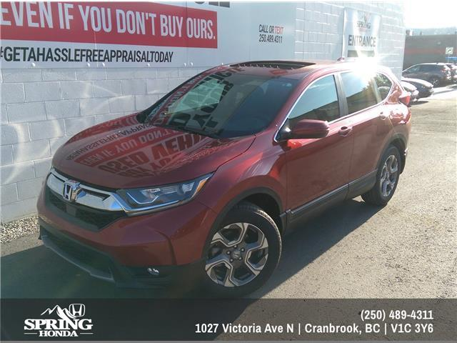 2019 Honda CR-V EX (Stk: H47107) in North Cranbrook - Image 1 of 7