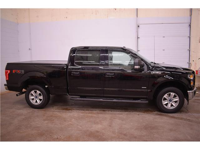 2017 Ford F-150  (Stk: B4395) in Kingston - Image 1 of 26