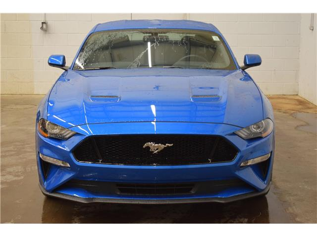 2019 Ford Mustang  (Stk: B4556) in Kingston - Image 2 of 26