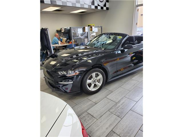 2019 Ford Mustang EcoBoost Premium Convertible (Stk: p20-145) in Dartmouth - Image 1 of 9
