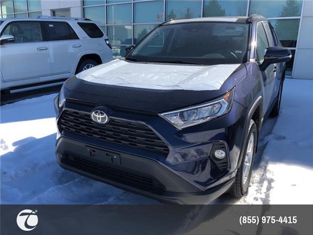 2019 Toyota RAV4 XLE (Stk: M190464) in Mississauga - Image 1 of 5