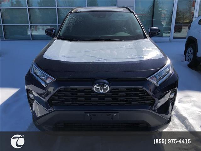 2019 Toyota RAV4 XLE (Stk: M190464) in Mississauga - Image 2 of 5