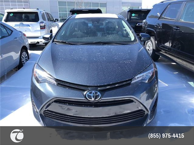 2019 Toyota Corolla LE (Stk: M190396) in Mississauga - Image 2 of 5