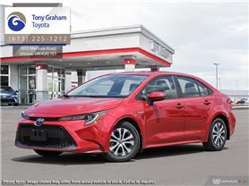 Graham Auto Mall >> Tony Graham New Used Lexus Toyota Dealership Ottawa On
