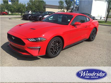 2019 Ford Mustang EcoBoost (Stk: K-81) in Calgary - Image 1 of 5