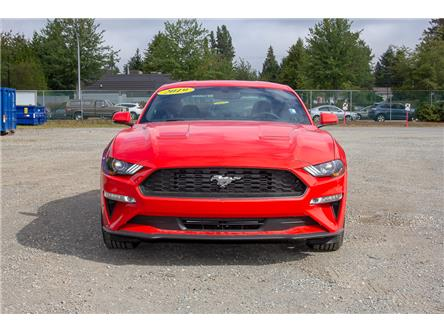 2019 Ford Mustang EcoBoost (Stk: 9MU3129) in Vancouver - Image 2 of 21