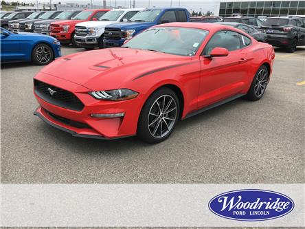2019 Ford Mustang EcoBoost (Stk: K-07) in Calgary - Image 1 of 5
