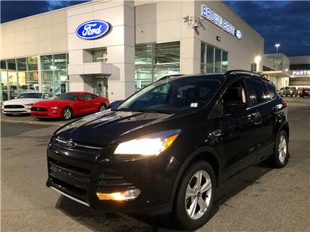 2014 Ford Escape SE (Stk: OP18308) in Vancouver - Image 1 of 25