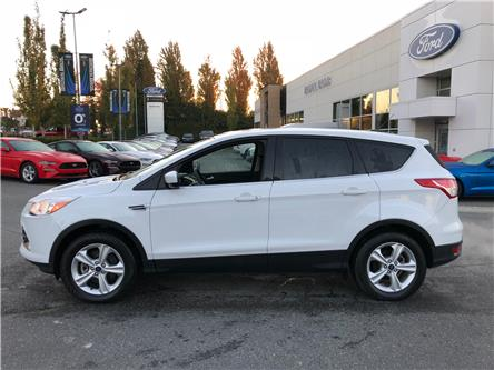 2014 Ford Escape SE (Stk: OP18319) in Vancouver - Image 2 of 20