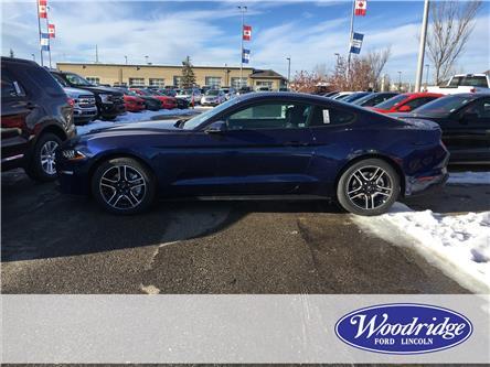 2019 Ford Mustang EcoBoost Premium (Stk: K-247) in Calgary - Image 2 of 5