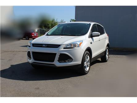 2014 Ford Escape SE (Stk: 19528) in Toronto - Image 1 of 16