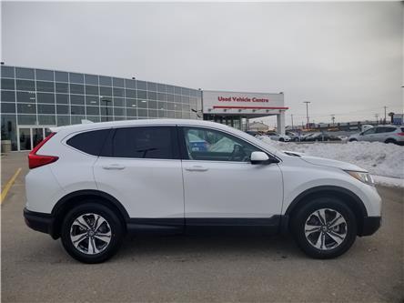 2019 Honda CR-V LX (Stk: 2190402) in Calgary - Image 2 of 9