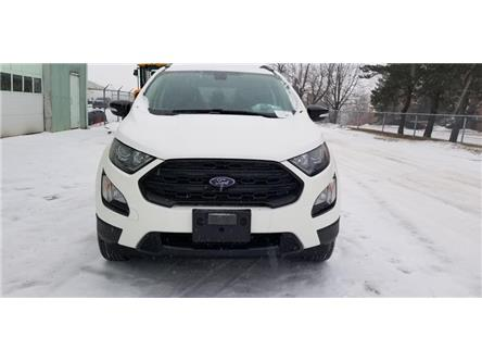 2019 Ford EcoSport SES (Stk: 19SP0569) in Unionville - Image 2 of 12