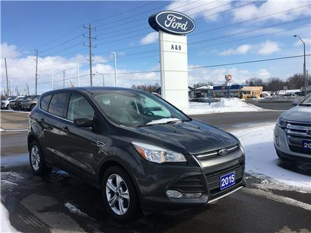 2015 Ford Escape SE (Stk: P5990) in Perth - Image 1 of 8