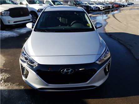 2019 Hyundai Ioniq EV Ultimate (Stk: 29141) in Saskatoon - Image 2 of 18