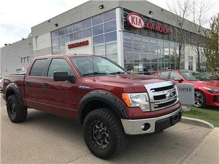 2014 Ford F-150 XLT (Stk: 7282) in Edmonton - Image 1 of 20