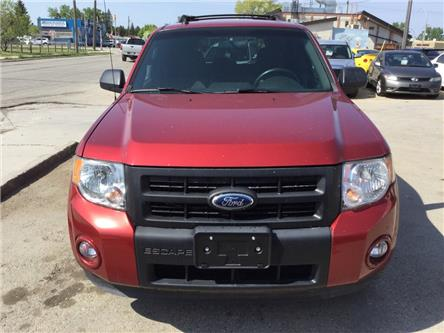 2012 Ford Escape XLT (Stk: 67) in Winnipeg - Image 1 of 15