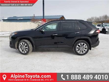 2019 Toyota RAV4 Limited (Stk: W018817) in Cranbrook - Image 2 of 19