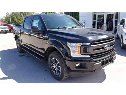 2019 Ford F-150 XLT (Stk: F1287) in Bobcaygeon - Image 2 of 21