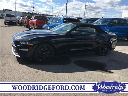 2019 Ford Mustang GT Premium (Stk: K-1580) in Calgary - Image 2 of 5