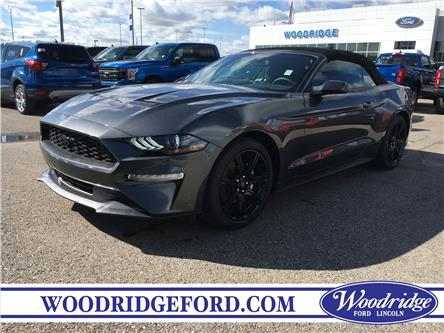 2019 Ford Mustang EcoBoost (Stk: K-1736) in Calgary - Image 1 of 5