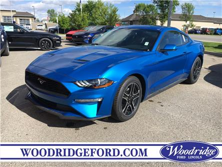 2019 Ford Mustang EcoBoost (Stk: K-2128) in Calgary - Image 1 of 5