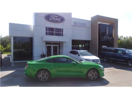 2019 Ford Mustang EcoBoost (Stk: M1064) in Bobcaygeon - Image 1 of 18