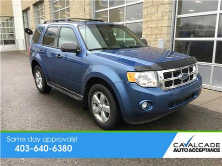 2009 Ford Escape XLT Automatic (Stk: R59770) in Calgary - Image 1 of 20