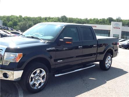 2013 Ford F-150 FX4 (Stk: 19267a) in Owen Sound - Image 1 of 10