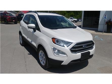 2019 Ford EcoSport SE (Stk: EC1326) in Bobcaygeon - Image 2 of 23