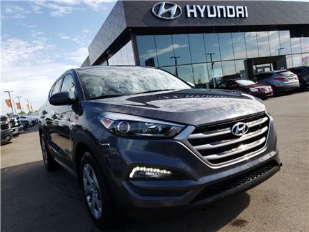 2017 Hyundai Tucson SE (Stk: 29241A) in Saskatoon - Image 1 of 19