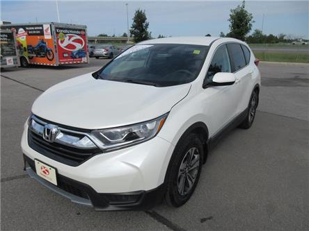 2018 Honda CR-V LX (Stk: K14611A) in Ottawa - Image 1 of 18